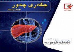 Fatty-Liver-kurdish