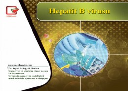 Hepatitis-B-Turkey